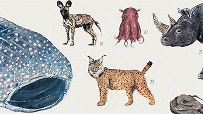 Should We Abandon Some Species to Extinction?
