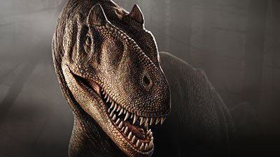 Allosaurus A Creationist's Best Friend