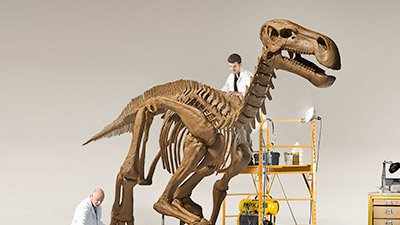 Building a Better Dinosaur