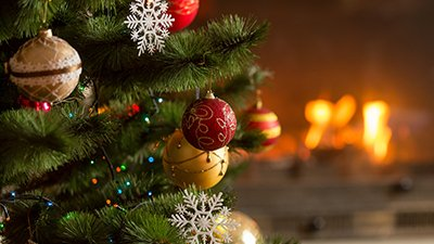 Do Christmas Trees Have Pagan Roots?