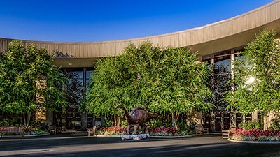 Now Visit the Ark and Creation Museum . . . By Visiting On-Line
