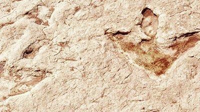 Dinosaur Footprint Wall in Bolivia