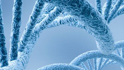 Epigenetics—Inheriting More Than Genes