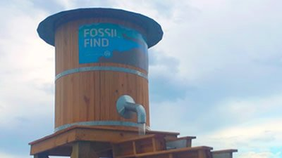 Fossil Find Open at Ark Encounter