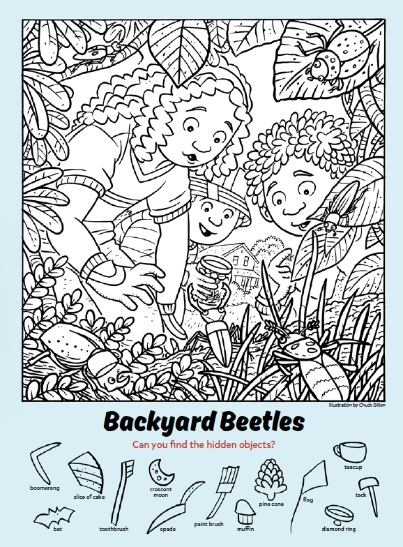 Backyard Beetles