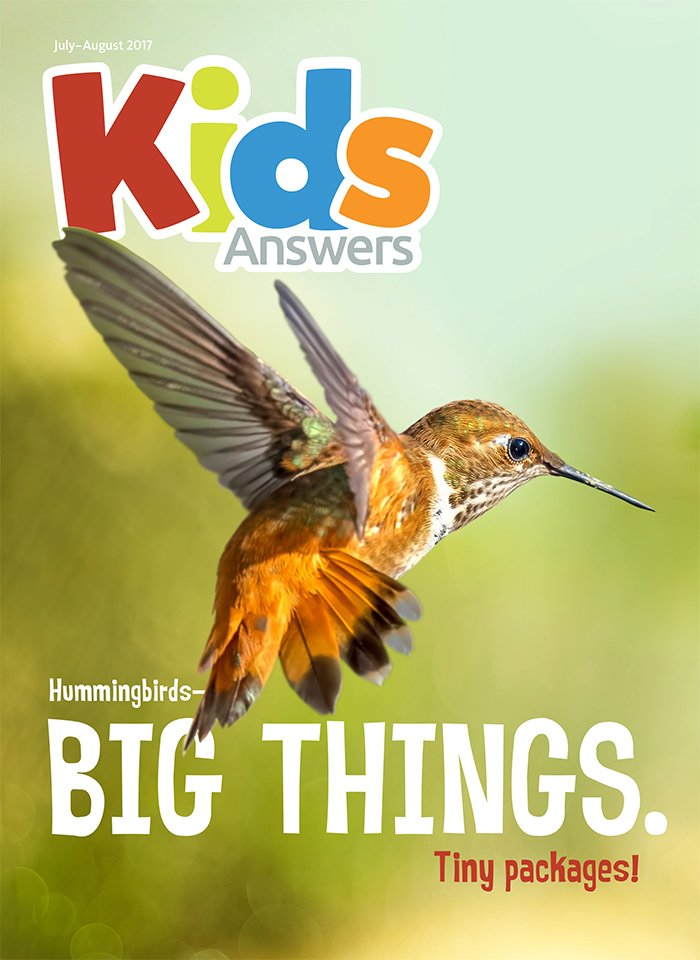 Hummingbirds—Big Things, Tiny Packages