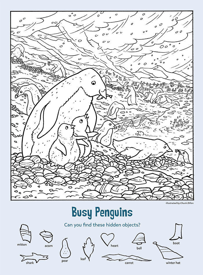 Busy Penguins: Find the Hidden Objects
