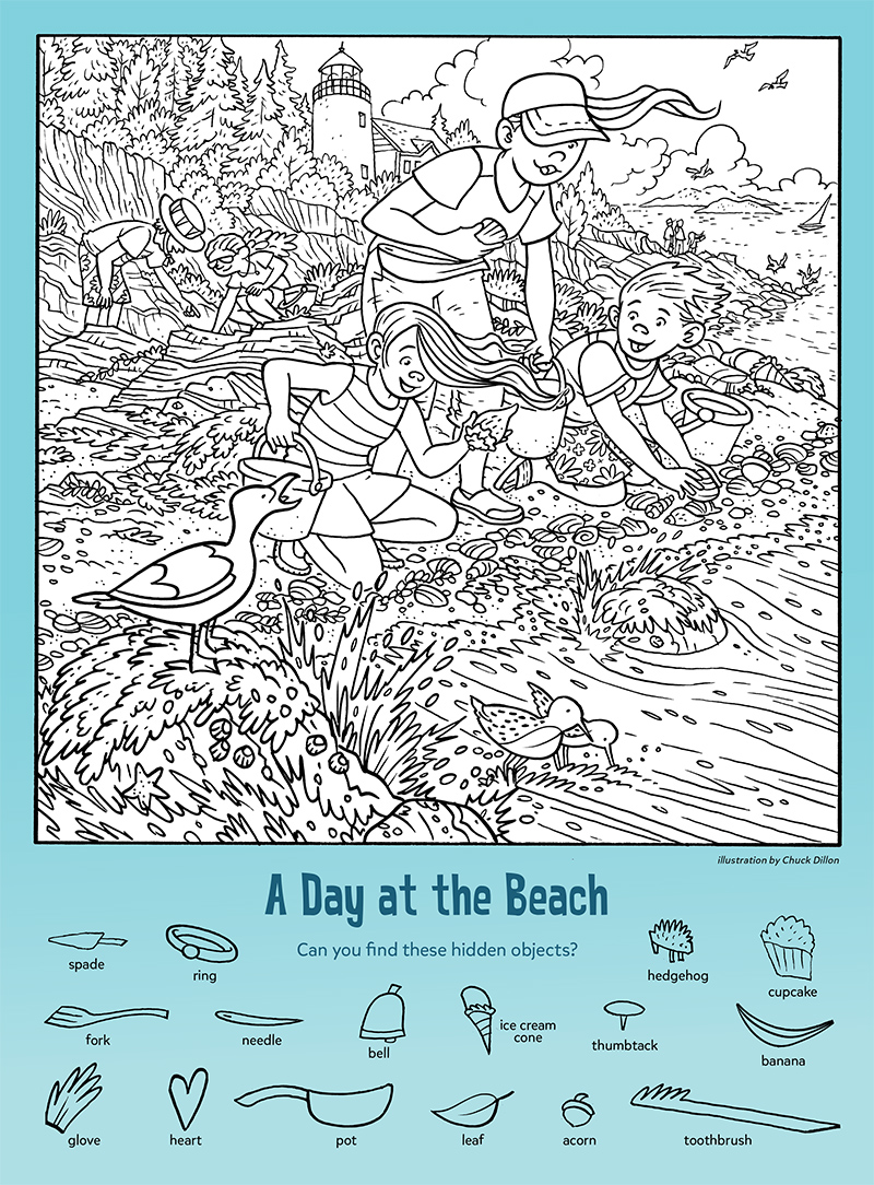 A Day at the Beach: Find the Hidden Objects