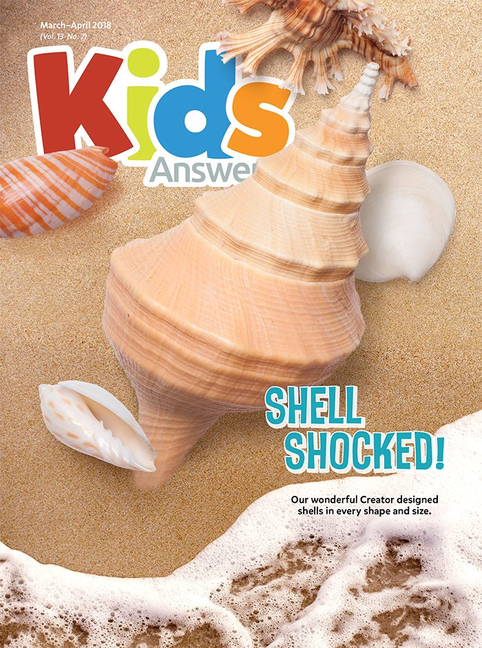Shell Shocked!