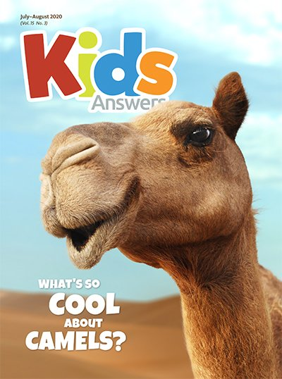 What's So Cool About Camels?