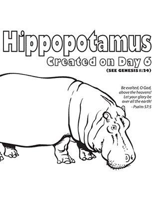 zoo hippo coloring