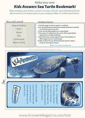 Sea Turtle Bookmark