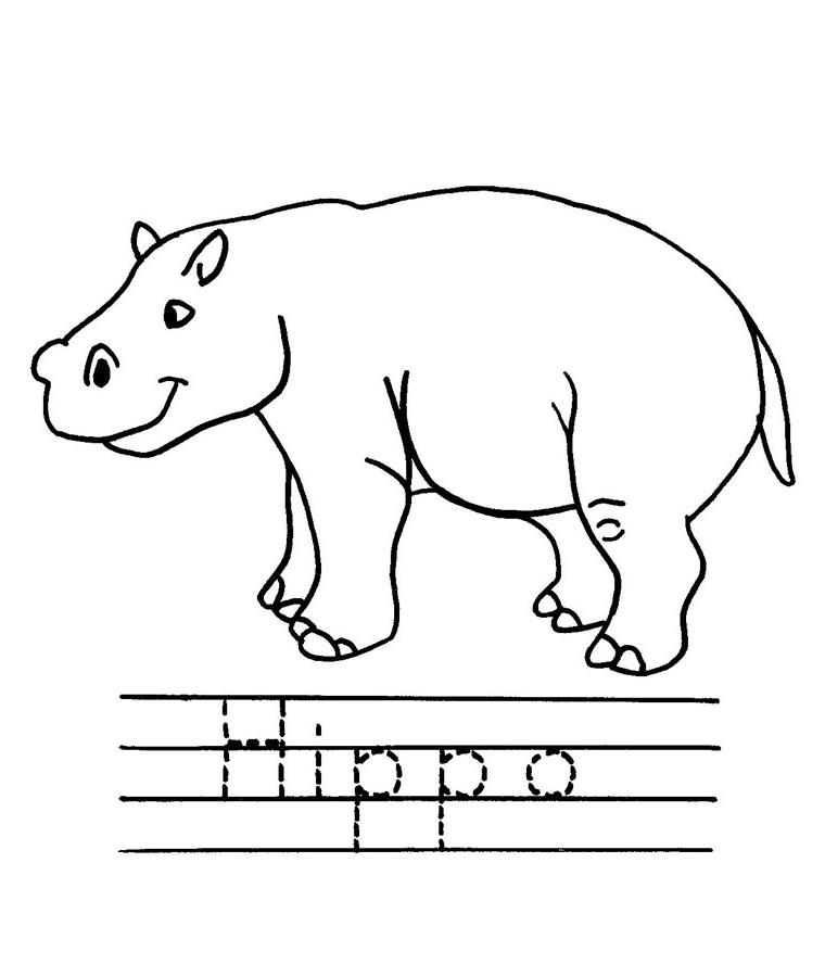 Color the Hippo