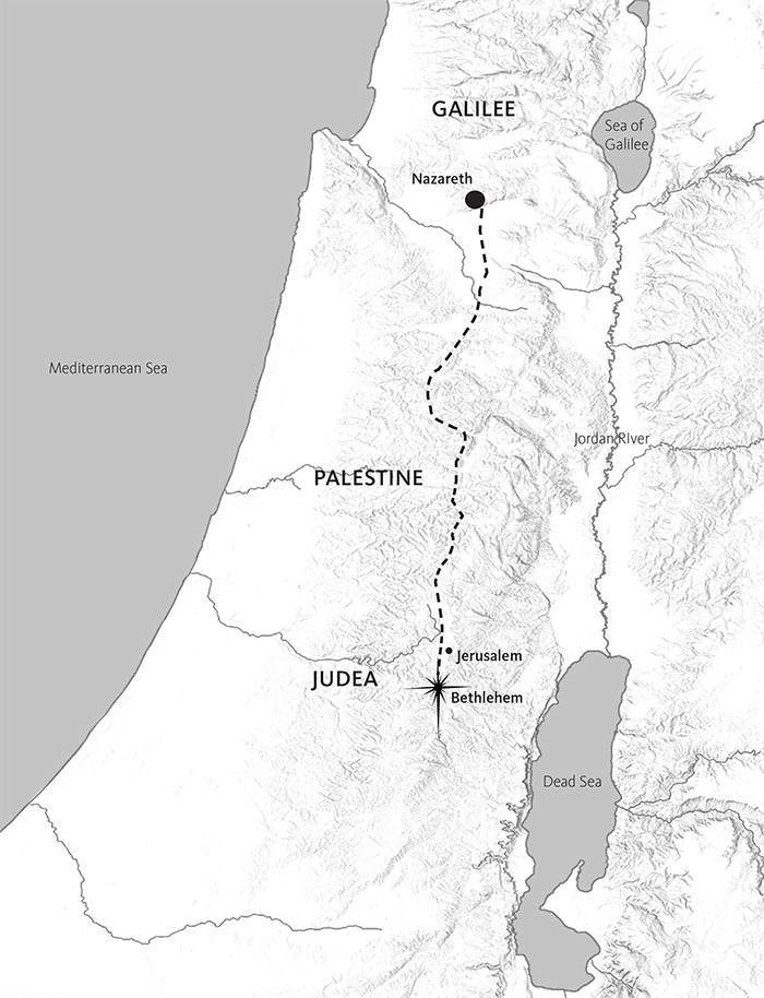 Israel Map Coloring