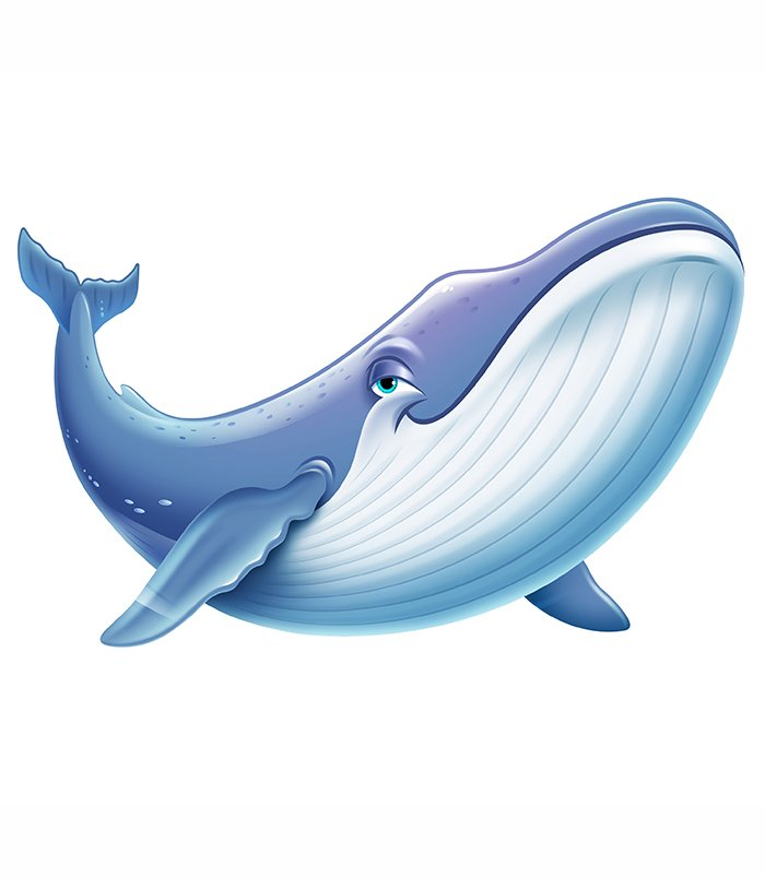 Blue Whale Bookmark