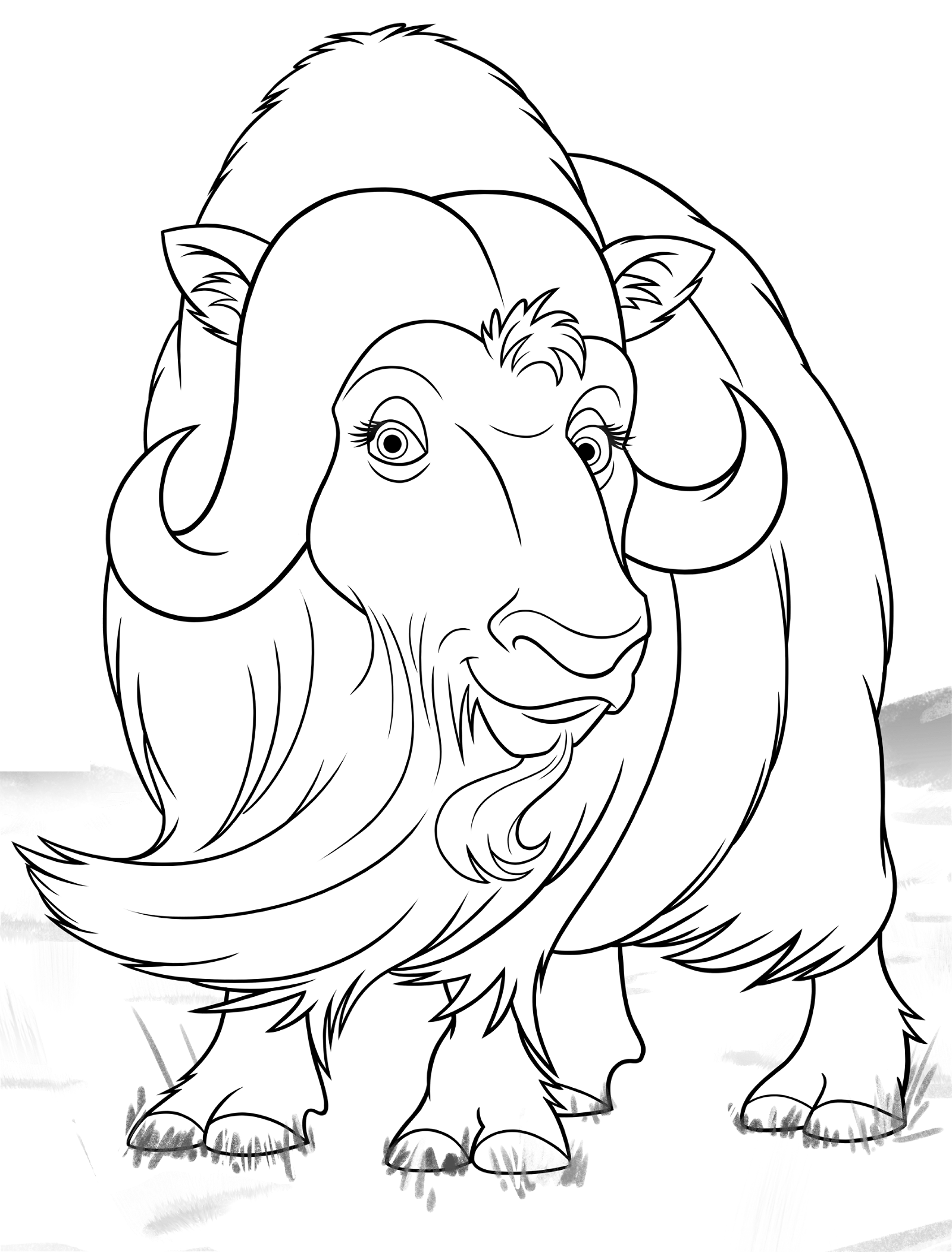 coloring pages of musk ox - photo#9