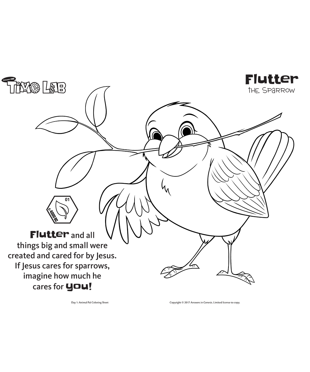 Flutter the Sparrow