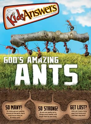 God's Amazing Ants