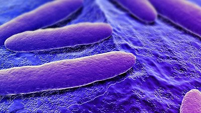 Staph Bacteria from First Breath