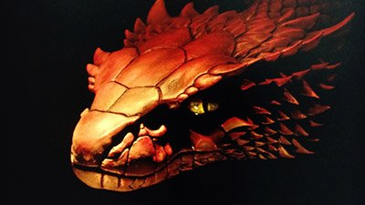 Four-Legged Snake Fossil Found in Museum