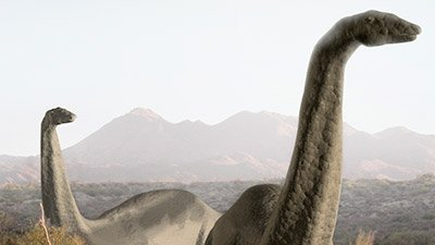 Sauropods Engineered for Size