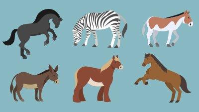 "Secrets to the Origin of Species: Demystifying ""Genetic Drift"""