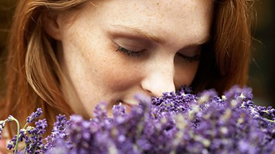 Some Women Without Olfactory Bulbs Can Still Smell—How?