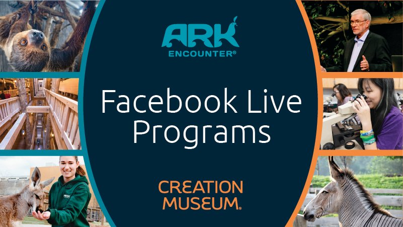 Don't Miss Out on Unique Facebook Live Programs