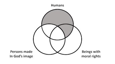 How to Spot Logical Fallacies by Drawing Venn Diagrams