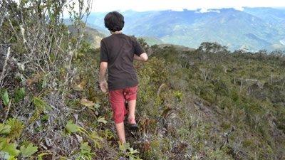 Unexplored Wilderness