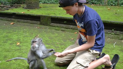 Visiting a Monkey Forest in Bali