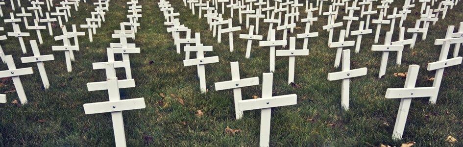 Crosses in a field