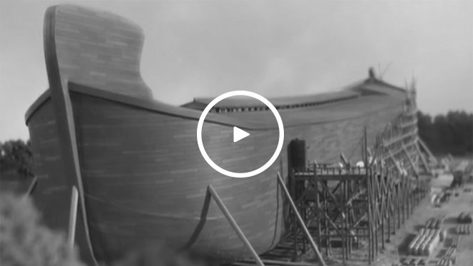 Noah's Ark: Thinking Outside the Box Video