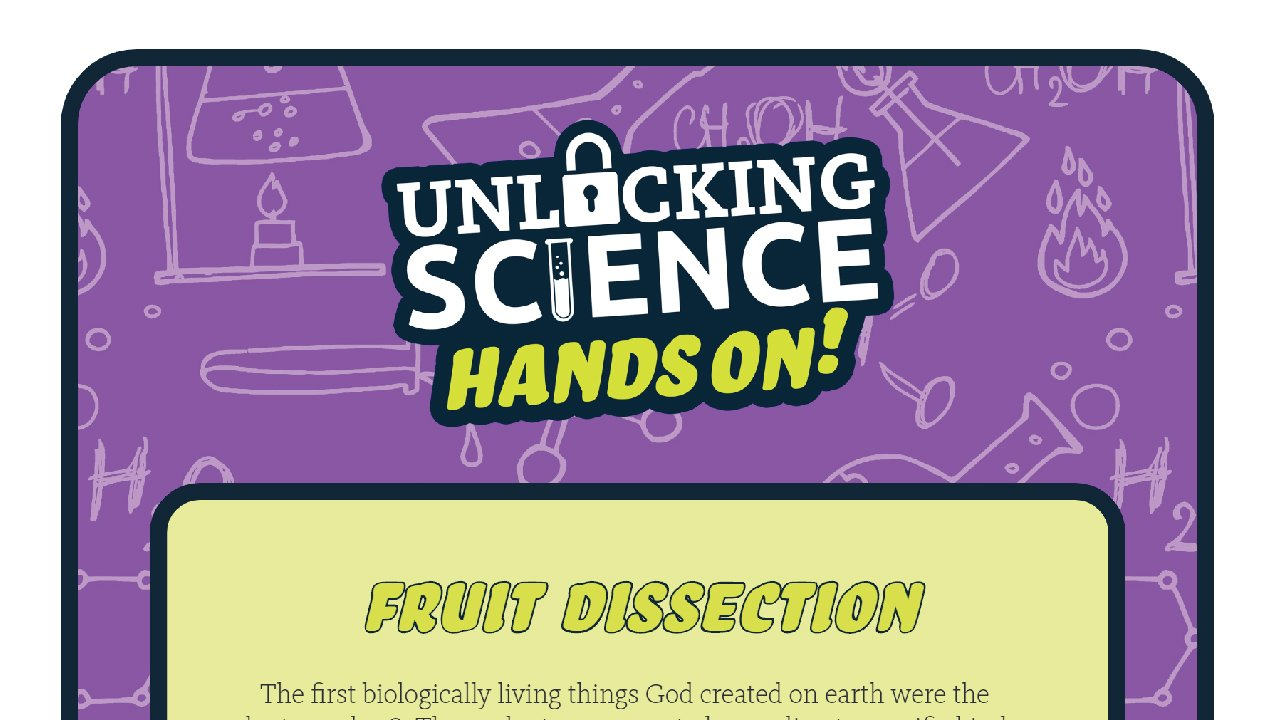 Hands on - Fruit Dissect
