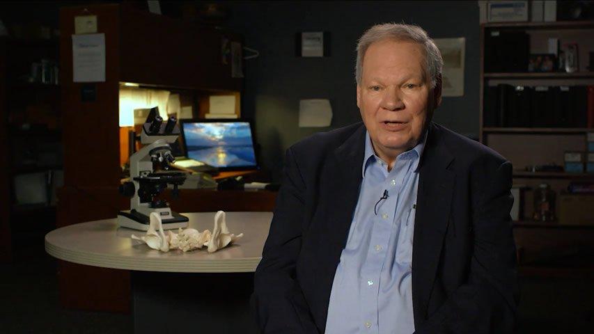 Dr. Dave Menton VOX Response