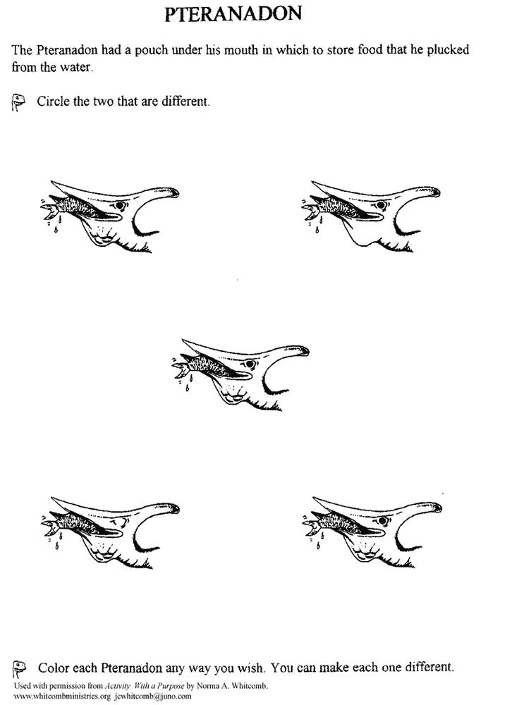 Pteranadon Game