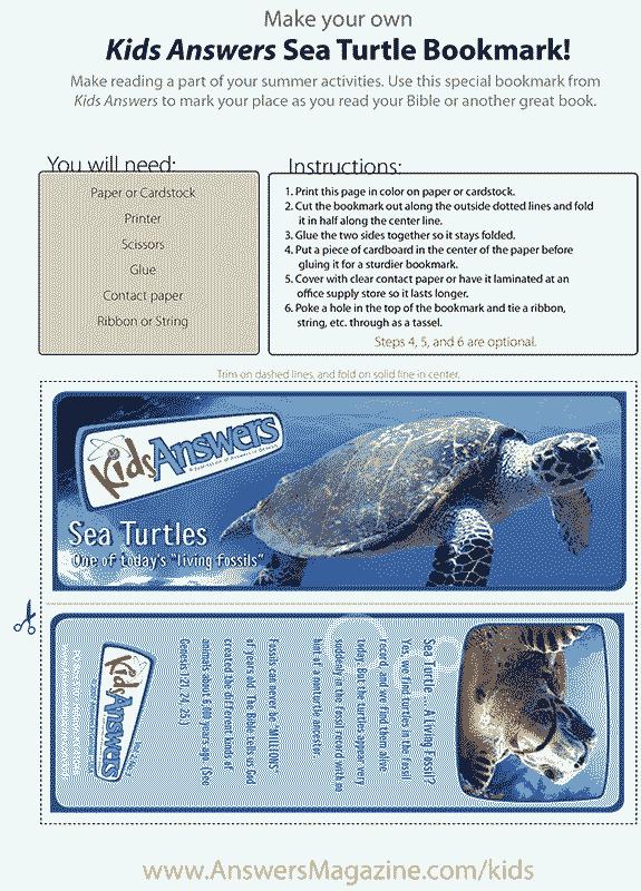 Sea Turtle Bookmark
