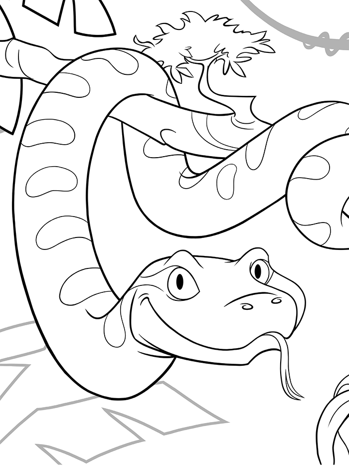 Bo the Anaconda
