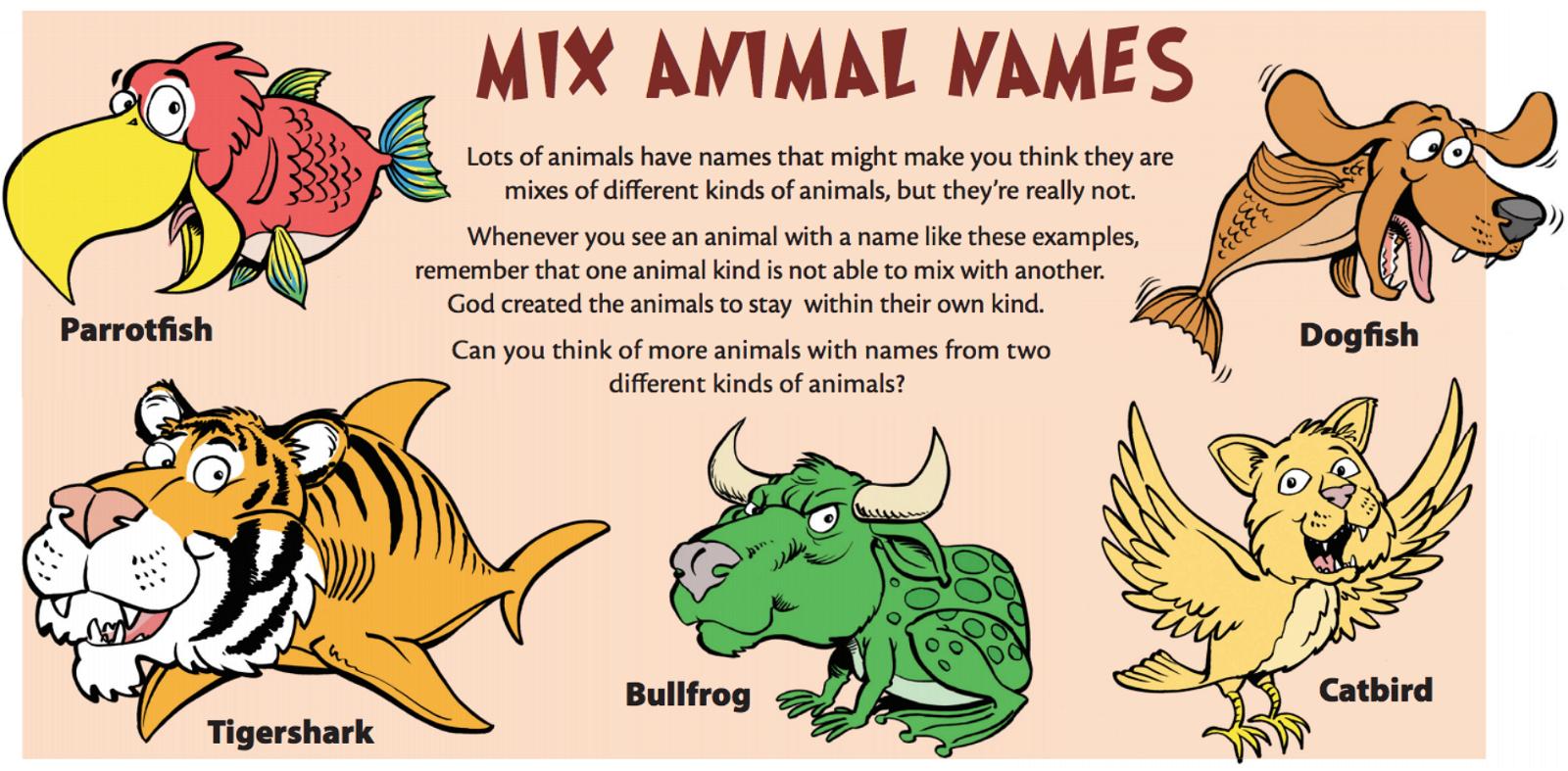 Mix animal names