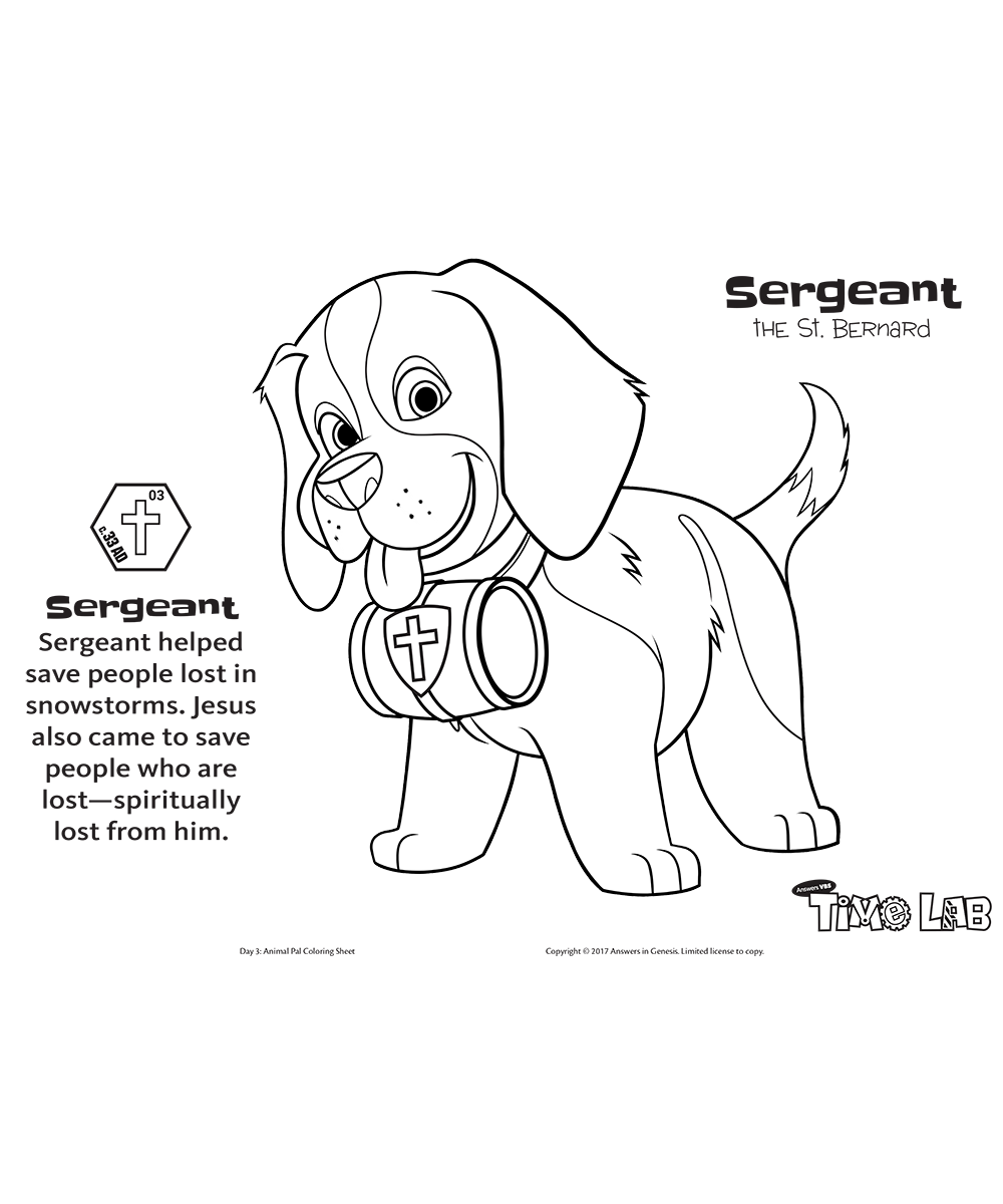 Sergeant the St. Bernard
