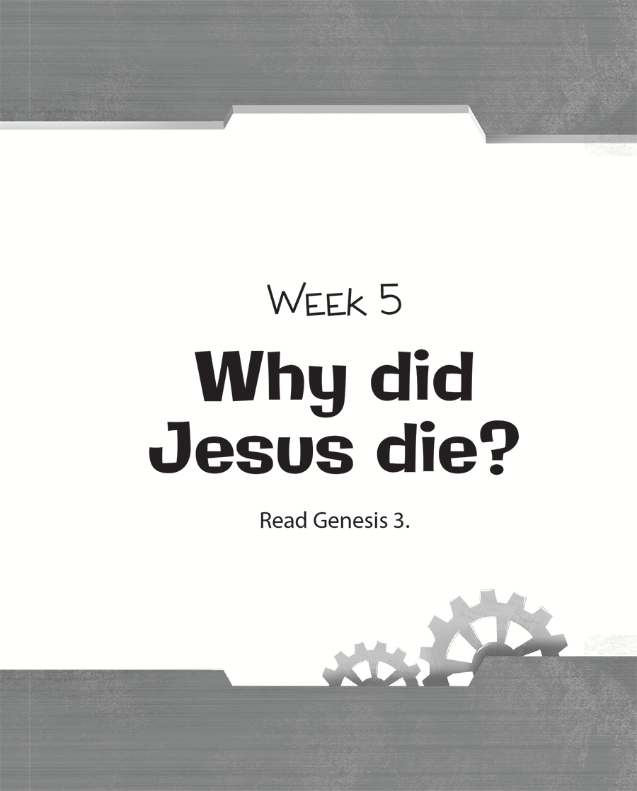 Week Five: Why Did Jesus Die?