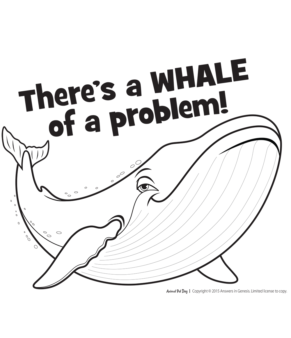 A Whale of a Problem