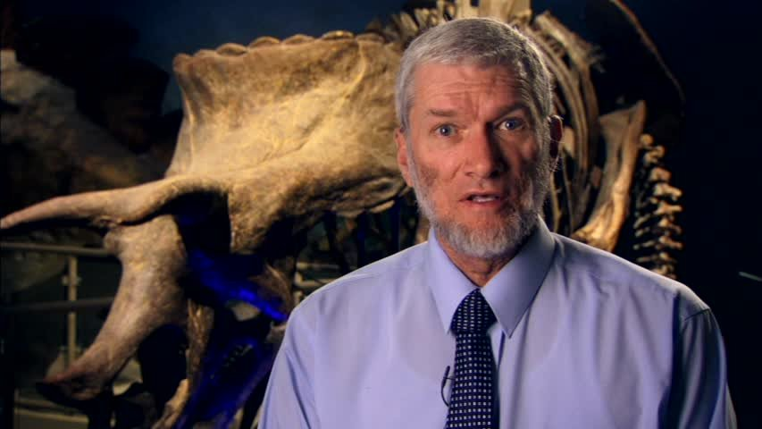 New Answers DVD 1: What Really Happened to the Dinosaurs?