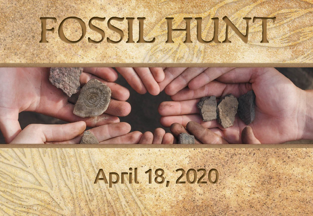 CANCELLED: Fossil Hunt with the Creation Museum!