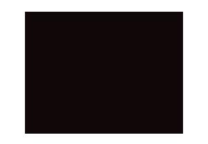 Zoomerang Logo Black and White