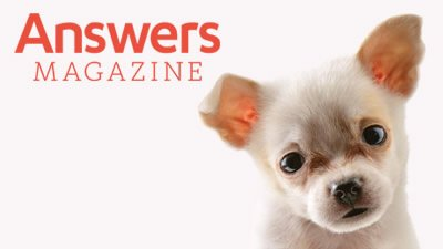 Answers Magazine 11.4