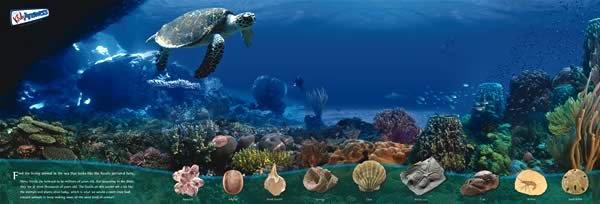 Underwater world poster