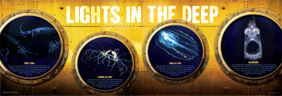 Lights in the Deep poster