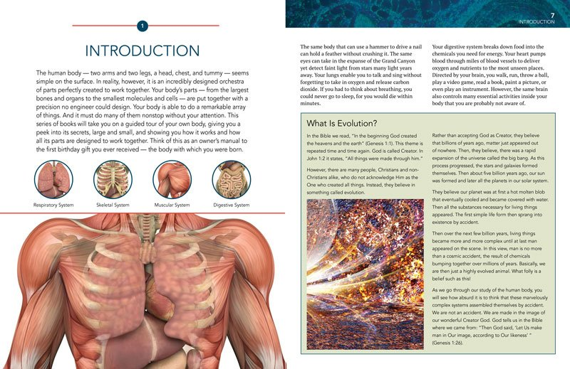 Introduction to Anatomy & Physiology: The Musculoskeletal System ...