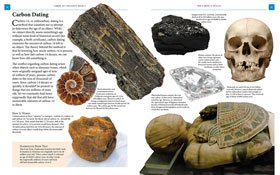 img/prod/etc/sample/prev/10-2-438-fossils.jpg